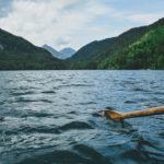 Pagaie kayak pas cher : laquelle choisir ?